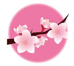 3月桃の花